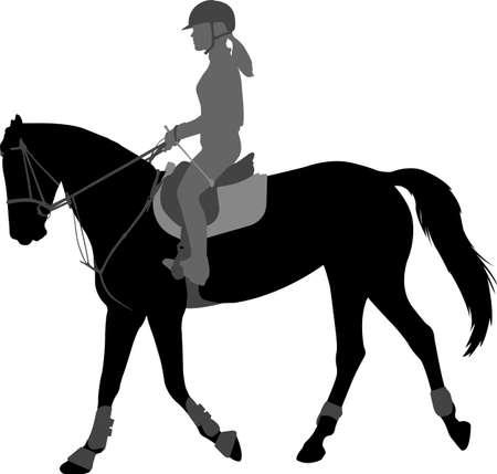 detailed silhouette of young female riding elegant horse Ilustração