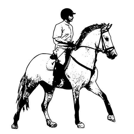 equestrian, sketch illustration - vector