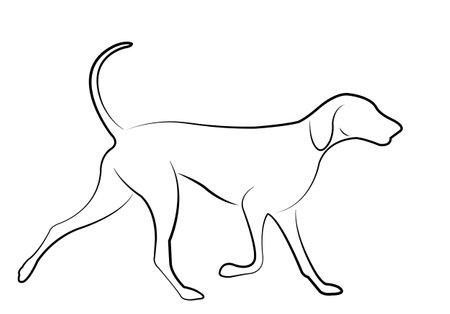 hound dog line art - vector