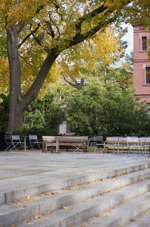 harvard university: Harvard University campus on a beautiful Fall day in Cambridge, MA, USA Stock Photo