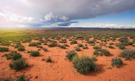 desert storm: Arizona Desert Storm Aproaching
