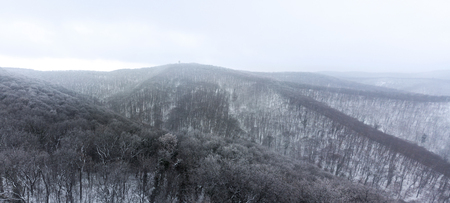 Winter Mountain Forest Aerial Shot, Woods Covered with Snow and Fog. Cold January morning.