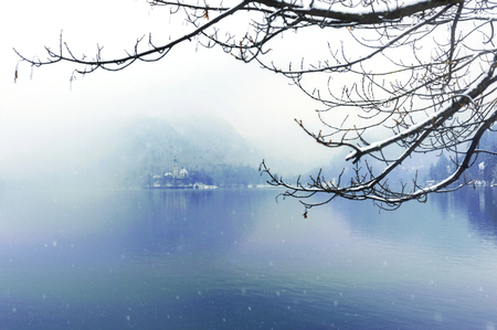 Winter at Famous Bled Lake National Park Slovenia Stok Fotoğraf