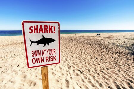 Shark Sighted, Swim at your own Risk Sign on Sunny day in Summertime at Sandy Beach