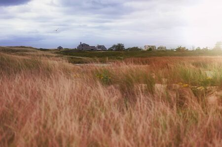 Nantucket Island Landscape, Soft Light Sunset and Houses in the distancenear the Beach