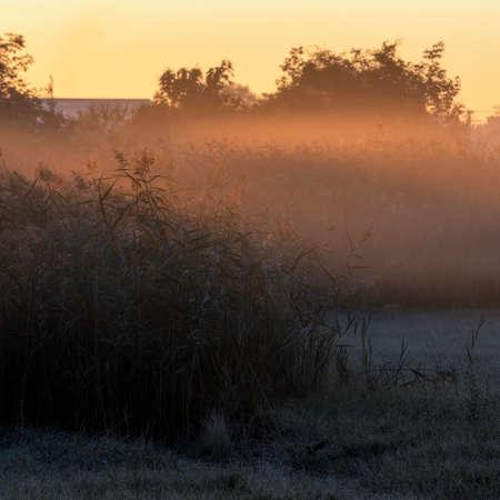 Crispy Autumn Fall Morning outside the village in Vojvodina, Serbia