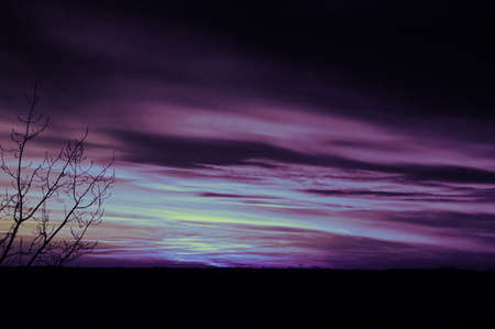 purple sunset: Purple Sunset