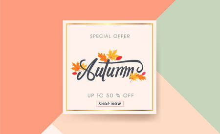 Autumn sale background layout decorate with leaves for shopping sale or promo poster and frame leaflet or web banner.Vector illustration template. Stok Fotoğraf - 84368222