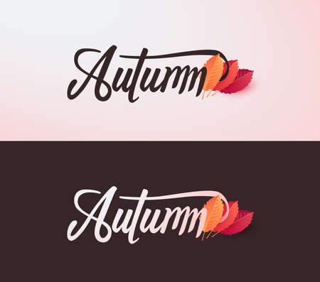 Autumn calligraphy. Seasonal lettering. Çizim