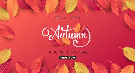 Autumn sale background layout