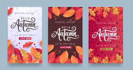 Autumn sale layout decorate with leaves for shopping sale or promo poster and frame leaflet or web banner. Ilustracja