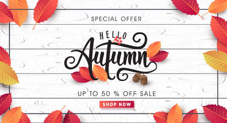 Autumn sale background layout decorate with leaves for shopping sale or promo poster and frame leaflet or web banner.Vector illustration template. Stok Fotoğraf - 85202574