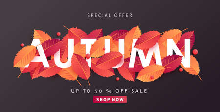 Autumn sale background layout decorate with leaves for shopping sale or promo poster and frame leaflet or web banner.Vector illustration template. Stok Fotoğraf - 111995191