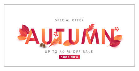 Autumn sale background layout decorate with leaves for shopping or promo poster and frame leaflet or web banner.Vector illustration template. Illustration