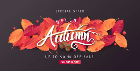 Autumn sale background layout decorate with leaves of autumn for shopping sale or promo poster and frame leaflet or web banner.Vector illustration template. Illustration