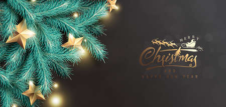Vector merry Christmas and happy New Year background design with Realistic tree Branches and gold stars. Stock Illustratie