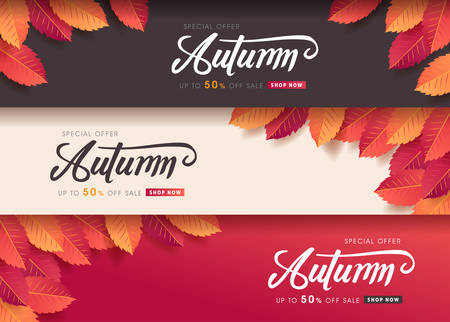 Autumn leaves background. vector illustration. Promotion sale banner of autumn season.