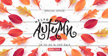 Autumn calligraphy on white wood. Seasonal lettering. autumn sale  banner background. vector illustration Illustration