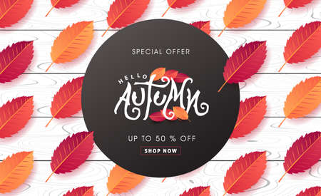 Autumn calligraphy on white wood. Seasonal lettering.autumn sale  banner background. vector illustration
