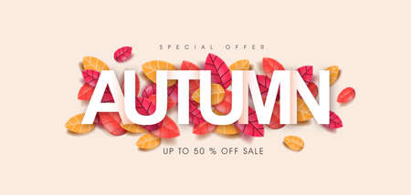 Autumn poster banner background with Text on leaves Stock Illustratie