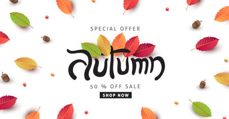 Autumn calligraphy poster banner background with autumn leaf Stock Illustratie
