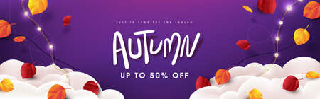 Autumn sale banner background layout decorate Variety of autumn leaves falling in sky with clouds