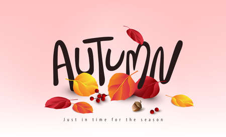 Variety of autumn leaves falling Autumn banner background and Seasonal lettering
