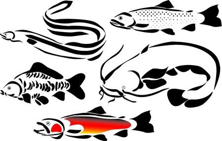 pez carpa: pescado logo