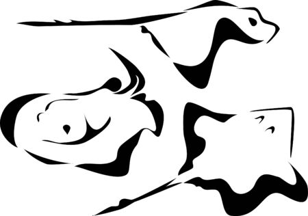stingray: stingray logo