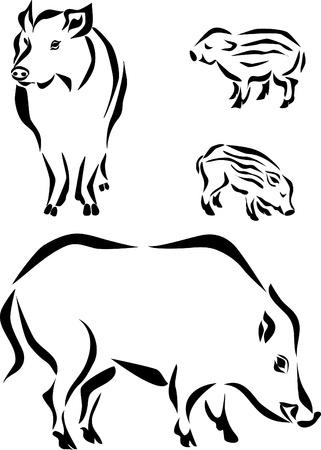 野生のイノシシの家族