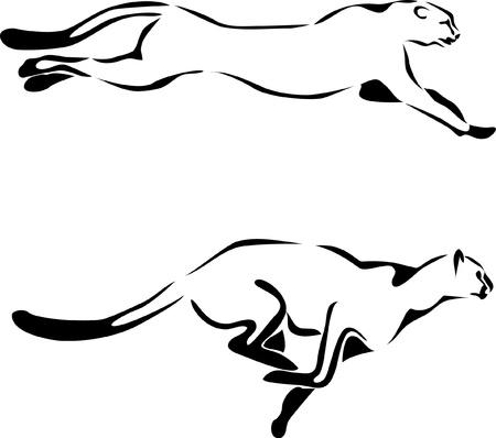 guepardo: logotipo de Cheetah