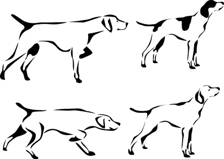 pointer dog: pointer dog logo
