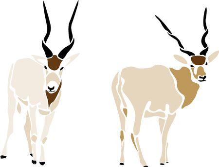 gazelle: addax antelope Illustration