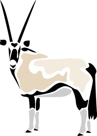 gazelle: gemsbok - oryx gazelle Illustration