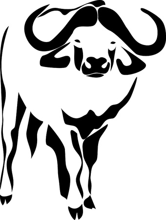 horned: water buffalo