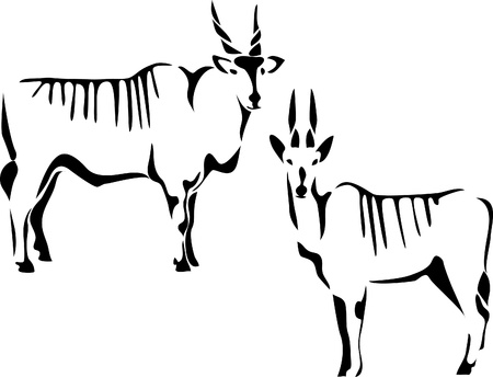 of antelope: eland antelope Illustration