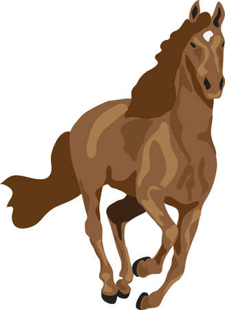 obedience: running brown horse
