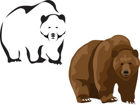 grizzly: niedźwiedź brunatny Ilustracja