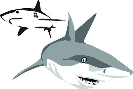 sea monster: shark