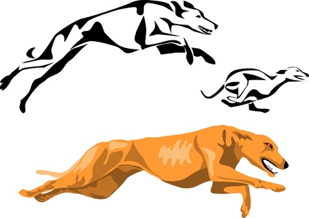 running greyhounds Illustration