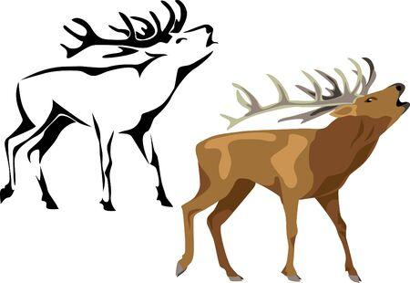 antlers: roaring deer