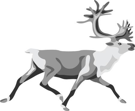 тундра: работает оленей Иллюстрация