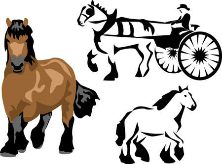 horse and carriage: draft horse with buggy