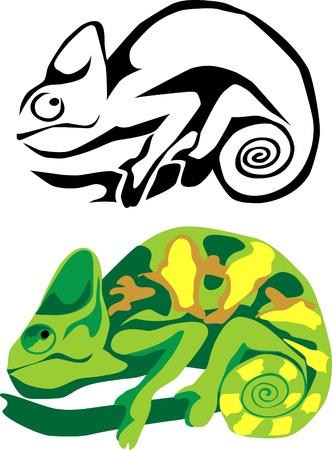mimicry: chameleon