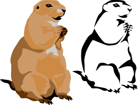 groundhog: prairie dog
