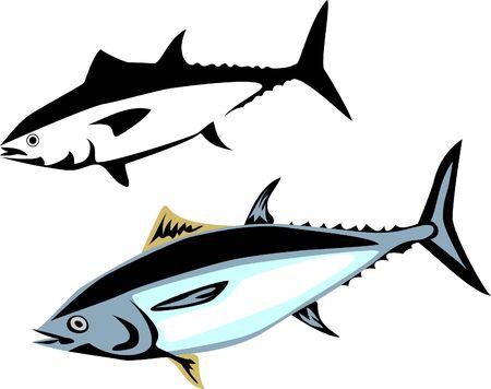 tuna fish Stock Vector - 13318724
