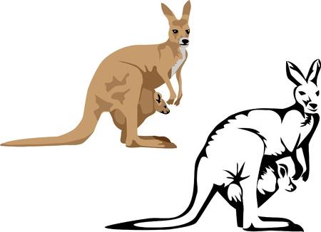kangaroo with young Stock Vector - 16953420
