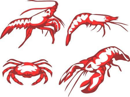 crustaceans: sea food - crustaceans