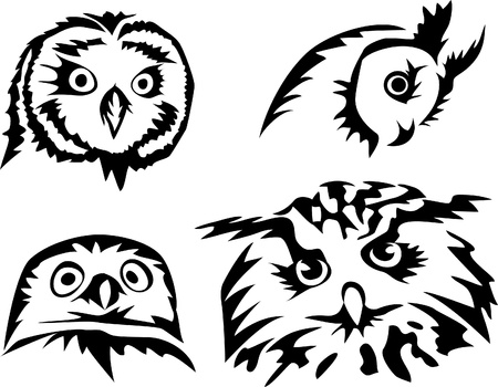 owl heads Stock Vector - 17120064