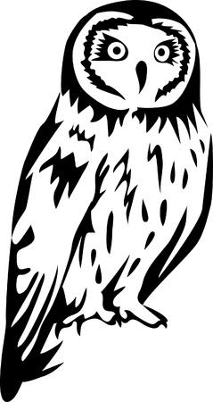 adler silhouette: Eulenlogo Illustration